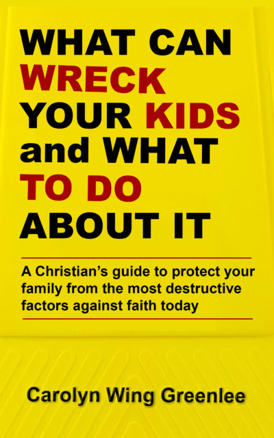 What can wreck Your Kids - book cover